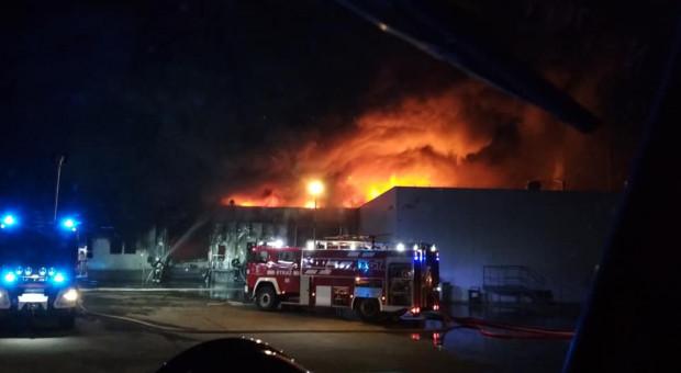 Iglotex: skala zniszczeń w zakładzie w Skórczu po pożarze jest ogromna