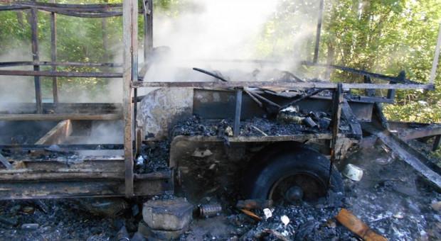 Pożar pasieki pod Braniewem, pszczelarz podejrzewa podpalenie