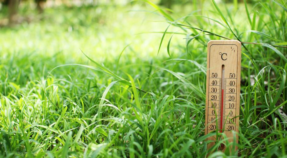 Ostatni tydzień wiosny będzie zwiastunem letniej pogody