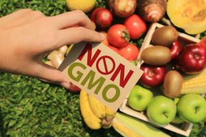 Sejm za oznakowywaniem produktów wytworzonych bez GMO