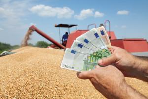 Ardanowski o cenach na rynkach rolnych