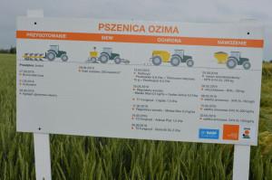 Demo Farma KWS Wybranowo; Fot. Katarzyna Szulc