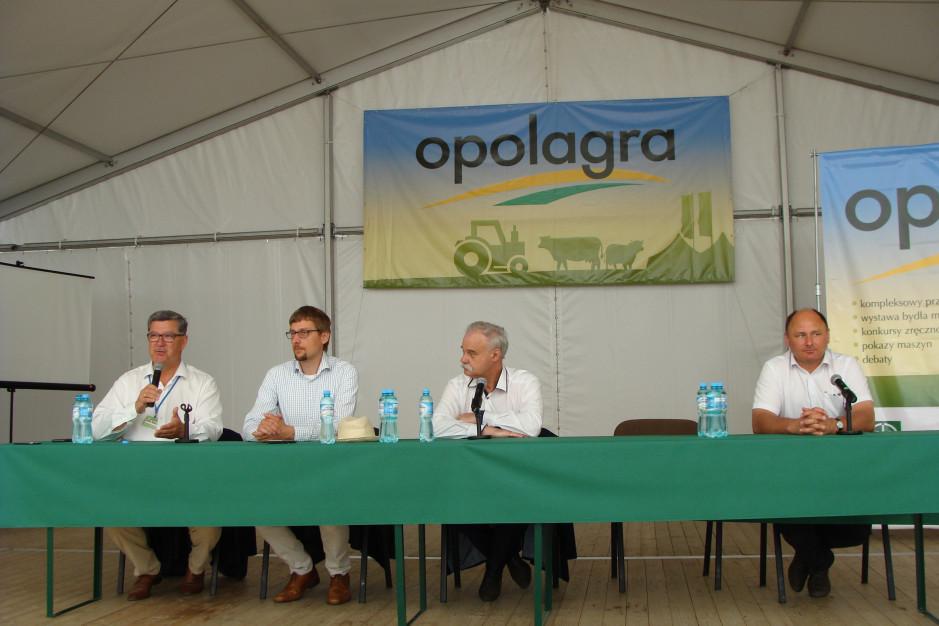 Opolagra 2019, fot. ArT