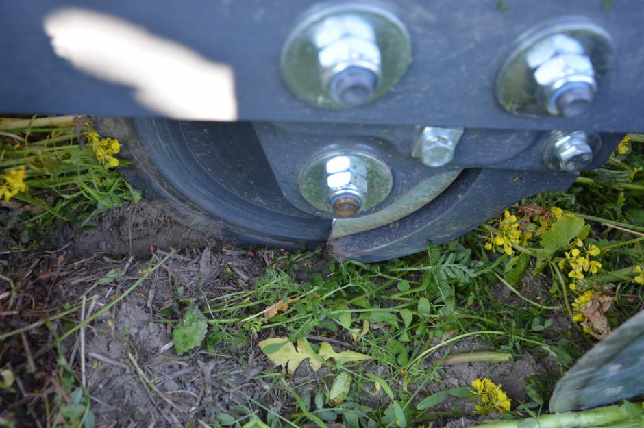 Jednotalerzowa redlica przecina resztki leżące na ziemi i umieszcza nasiona na zadanej głębokości. Ciężkie koło dogniatające dokładnie zamyka bruzdę nasienną