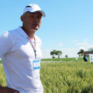 Dr Przemysław Matysik odpowiedzialny w spółce za hodowlę pszenicy ozimej Fot. A.Kobus