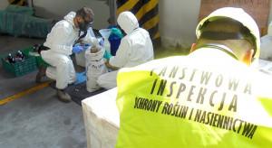 Prawie 93 tony nielegalnych środków ochrony roślin – sukces operacji PIORiN, KAS oraz policji