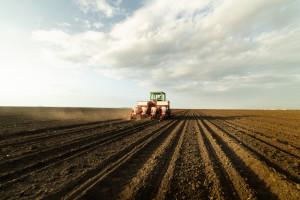Rosja: Siew roślin jarych przeprowadzono na 50,4 mln ha