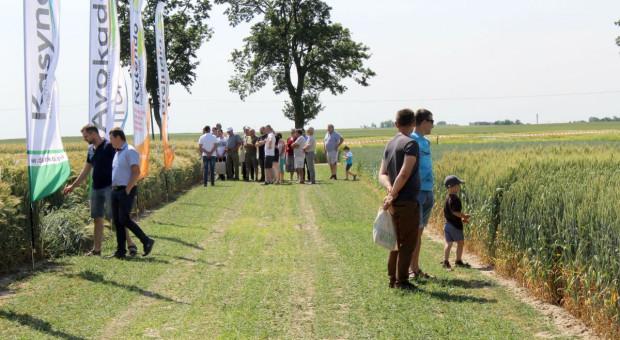 Nowości na Dniach Pola Danko w Sobiejuchach pod Żninem