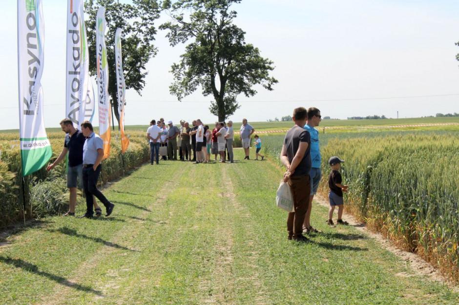 Dni Pola w Sobiejuchach cieszyły się dużym zainteresowaniem rolników  Foto: GT