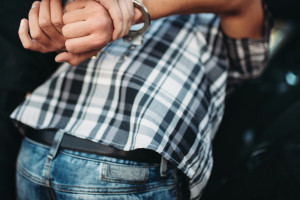 Opole: zatrzymania w sprawie oszustw na szkodę rolników