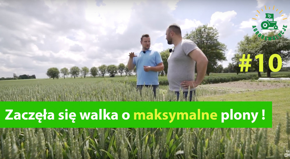Agrorewolucje #10: Walka o maksymalny plon