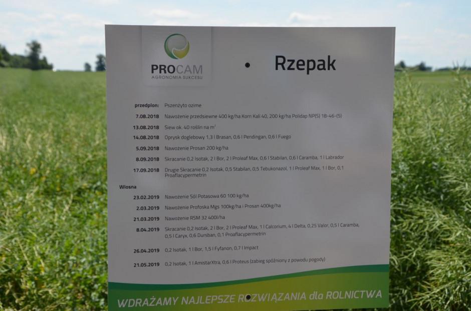 Karta technologiczna uprawy rzepaku, fot. M. Tyszka
