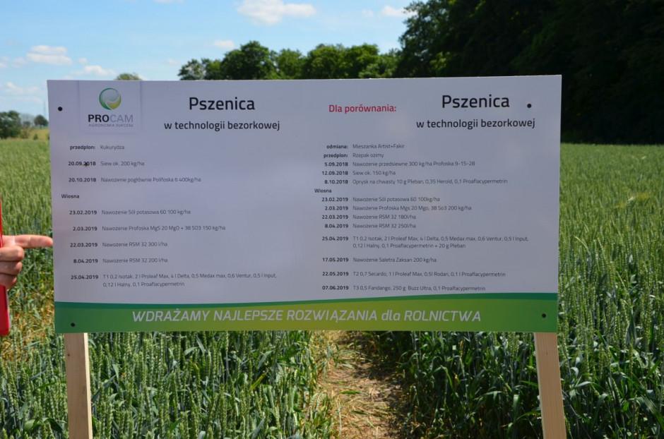 Karta technologiczna uprawy pszenicy, fot. M. Tyszka
