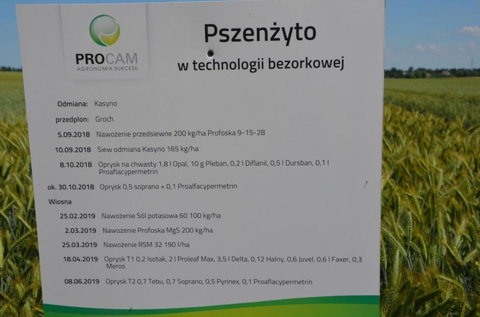 Karta technologiczna uprawy pszenżyta ozimego, fot. M. Tyszka