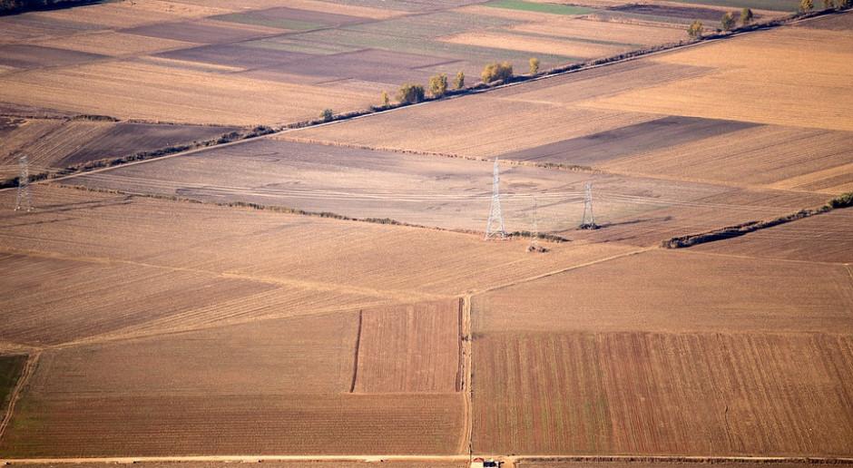 Blisko 800 ha gruntów rolnych sprzedanych cudzoziemcom w 2018 r.