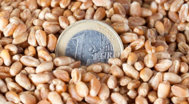Dlaczego spadły stawki dopłat do nasion?