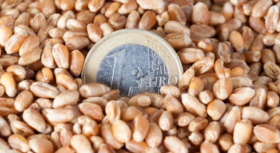 Upływa termin składania wniosków o dopłaty do nasion