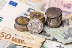 Jakie będą tegoroczne stawki dopłat bezpośrednich?