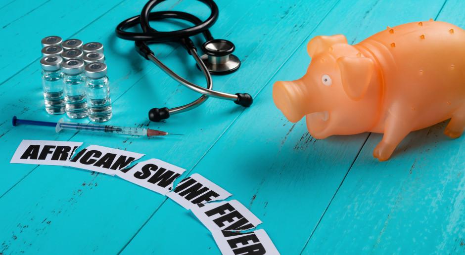 Ponad 133 mln zł na program zwalczania ASF i poszerzenia wiedzy na temat tej choroby