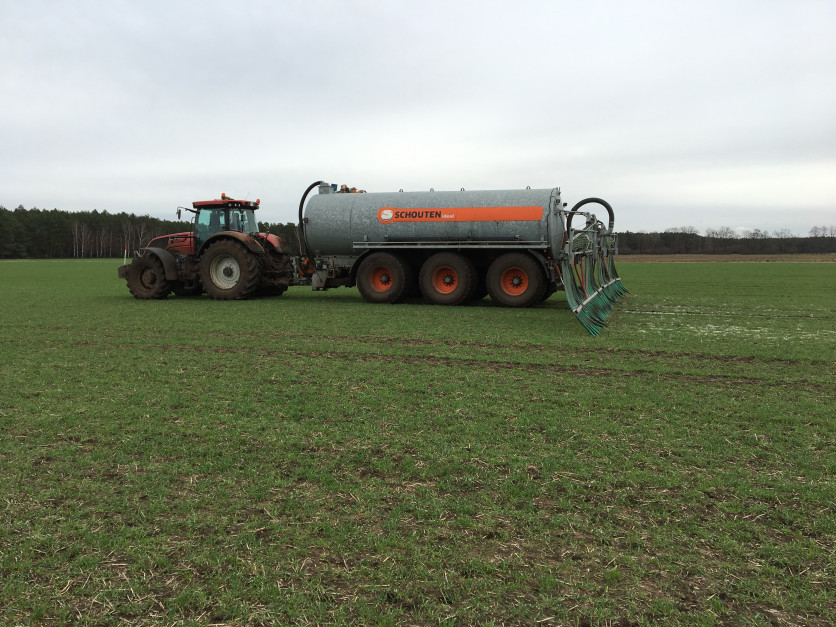 Stosowanie gnojowicy pogłównie jest możliwe. Praktykowane to jest na zachodzie Europy w uprawie zbóż ozimych, kukurydzy i trwałych użytków zielonych. Zasilanie w ten sposób rzepaku (węże wleczone) przynosi pozytywny efekt tylko pod warunkiem, że nie będzieon nadmiernie wyniesiony ponad powierzchnię gleby – w innym przypadku uszkadzane są pąki kwiatowe, zarówno mechanicznie, jak i chemicznie na skutek niekorzystnego działania nawozu. Oznacza to, że rozlewanie musi być wykonane bezpośrednio po ruszeniu wegetacji. Prawne ograniczenie stosowania od 1 marca tego typu nawozów sprawia kłopoty aplikacyjne