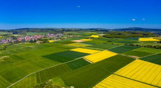 Niemcy: Rosną ceny gruntów rolnych