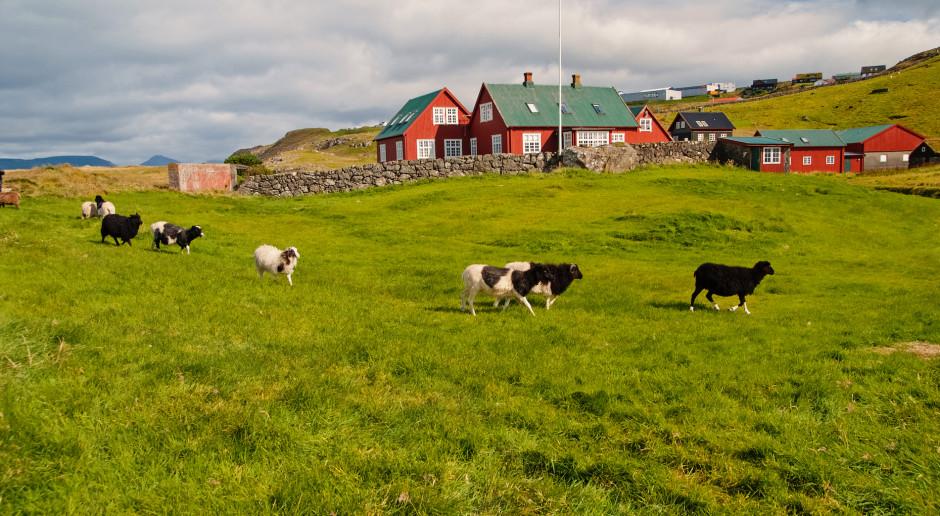 Dania: Od 2010 r. 33 proc. mniej pełnoetatowych gospodarstw