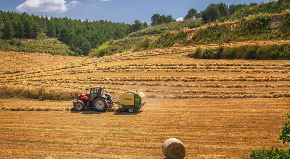 Na Ukrainie zebrano ponad 2,6 mln ton zbóż i grochu