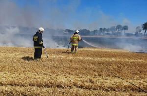 Wraz z upałami strażakom przybywa pracy także na polach, OSP Kosowo