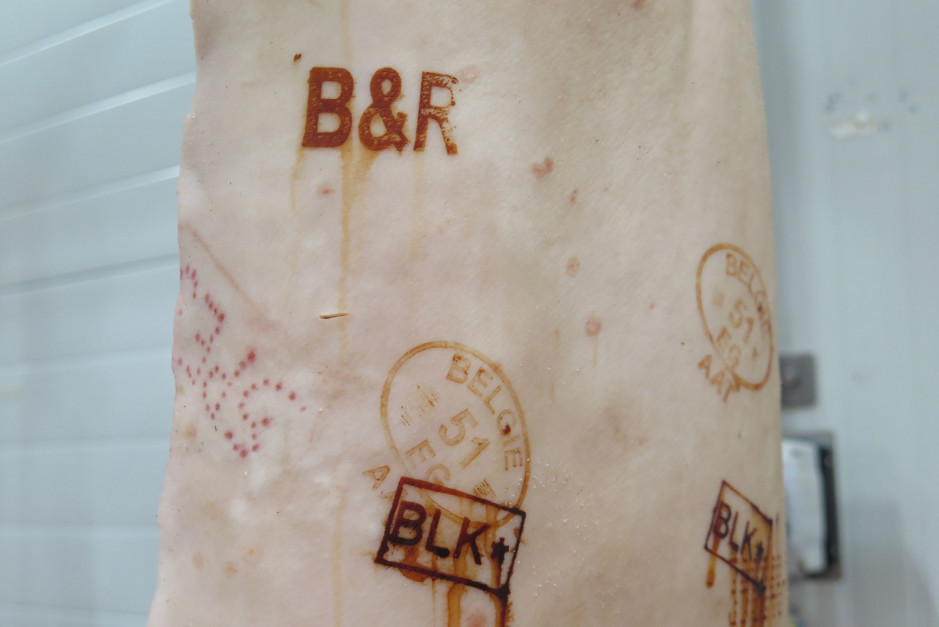 Oznaczenia na tuszy B&R oraz BLK. fot. I.Dyba