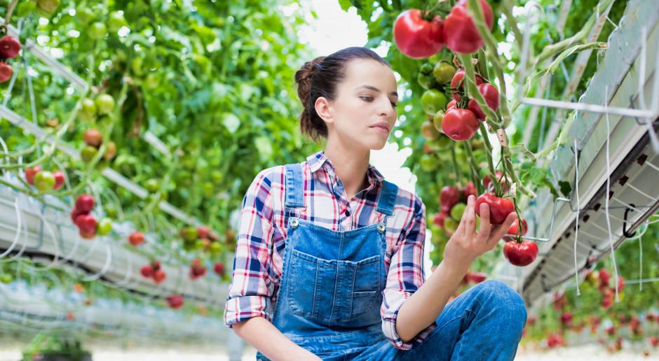 Morawiecki: Rolniczy handel detaliczny szansą dla młodych na wsi
