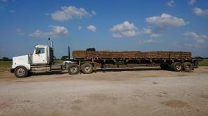 Trawa w rolkach załadowywana do transportu, zdjęcia: T.Kuchta