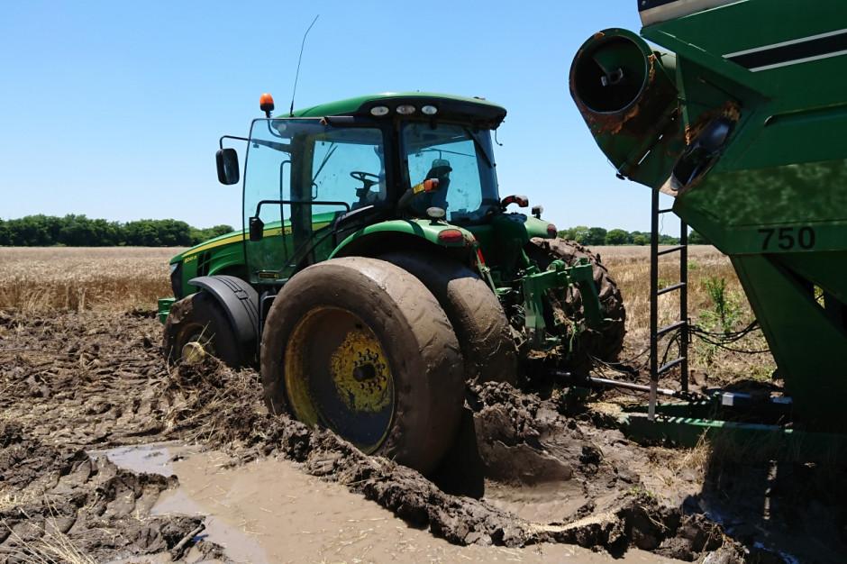 Podczas gdy w Polsce panuje ogromna susza, farmerzy w Teksasie w USA nie pamiętają tak mokrego ale i urodzajnego roku, fot. T.Kuchta
