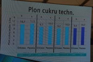 Plon cukru technicznego w doświadczeniu przeprowadzonym w Sokołowie wraz z IOR w Poznaniu. od lewej rok 2016, 2017 i 2018