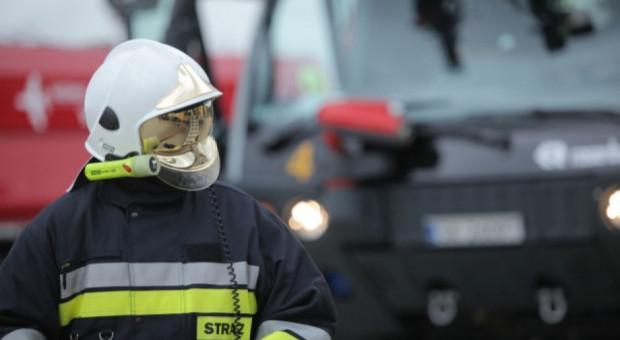 Opanowano pożar w zakładzie przetwórstwa rybnego w Złocieńcu