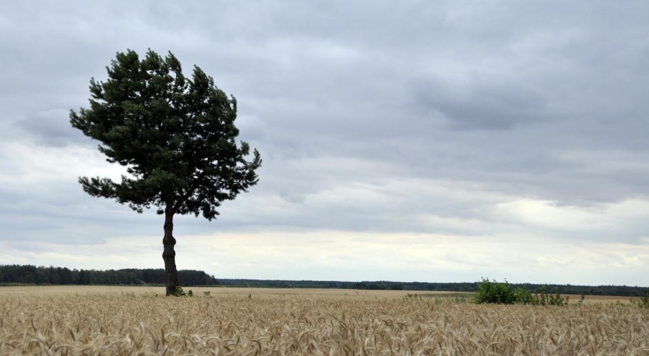 POT chce zwiększyć zainteresowanie Polaków turystyką wiejską