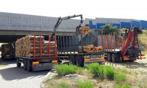 Transporty zatrzymane koło Wrześni musiały zostać doprowadzone do normatywności, Foto: WITD Poznań