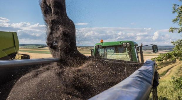 PKBiPB: Ceny referencyjne mogłyby wprowadzić zakłócenia na rynku zbóż i rzepaku