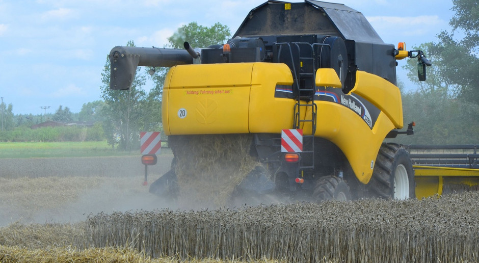 Rosja: Zebrano zboża i bobowate z 6,9 mln ha