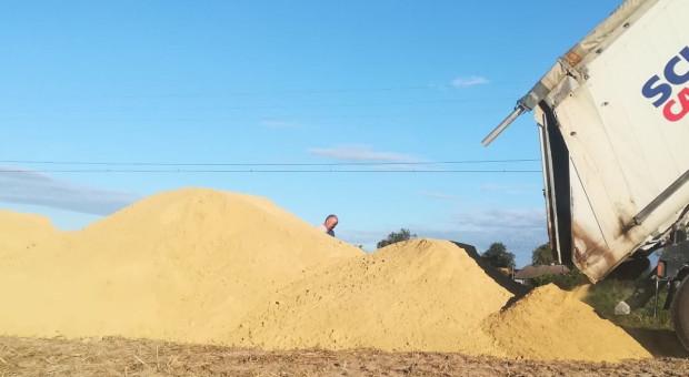 Wapnowanie – jak zweryfikują wielkość gospodarstwa?