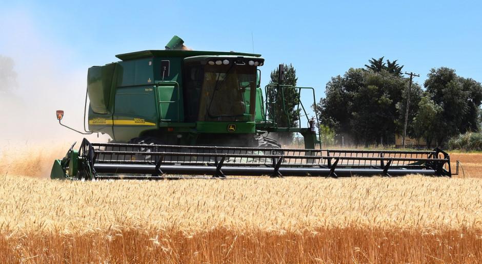 Białoruscy rolnicy zamierzają zebrać około 7,6 mln ton zboża w 2019 r.