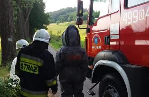 Strażacy w specjalistycznych kombinezonach zabezpieczyli ocalałe owady,  Foto: OSP Wleń