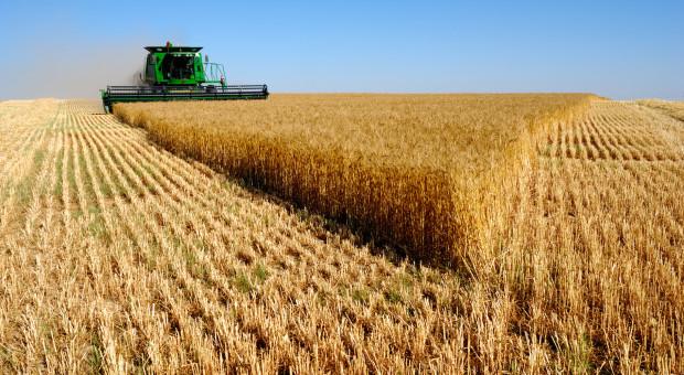 """Co mamy z """"Modernizacji gospodarstw rolnych""""?"""