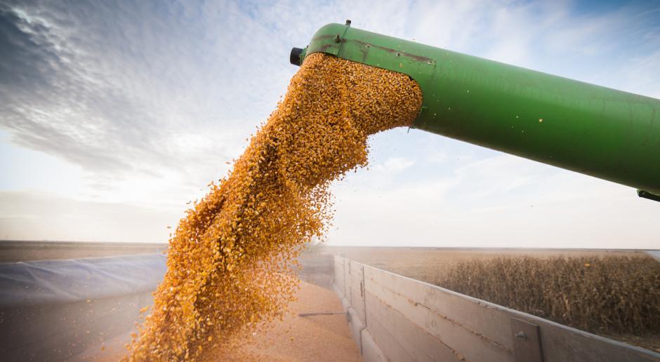 Dobiega końca zbiór zbóż na Ukrainie