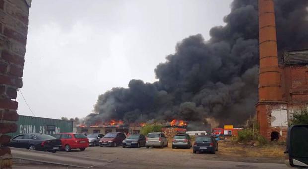Pożar w skupie zboża – spłonął magazyn i ziarno