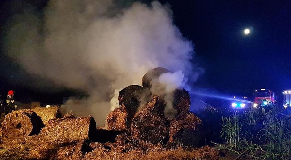 Policja zatrzymała 29-letniego podpalacza słomy