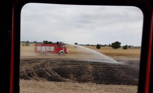 W Polichnie płonęło zboże na pniu, Foto: OSP Wolbórz