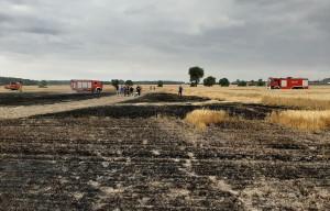 W Polichnie poszło z dymem w sumie 6 ha zboża, Foto: OSP Wolbórz