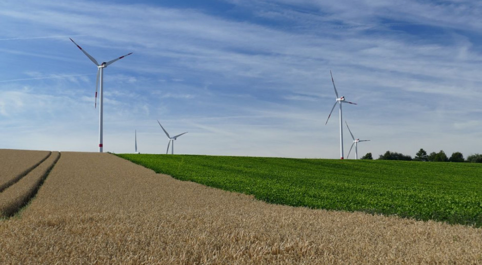 Złodzieje ogołocili z kabli elektrownię wiatrową