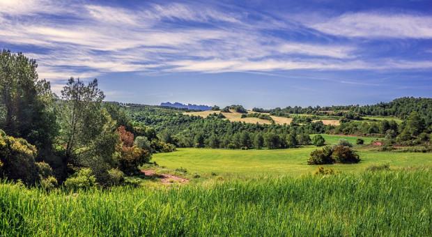 Kiedy rolnicy sprzedają ziemię?