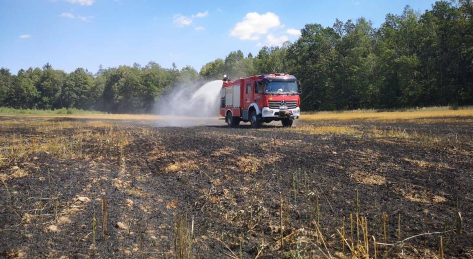 Zapaliła się ciężarówka z wapnem i pole wokół niej